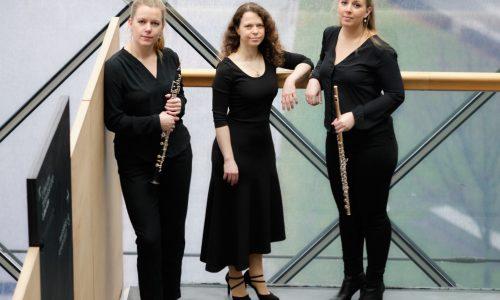 Steinaa-Trio